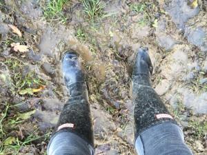 10_mud