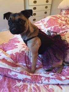 Betty wearing dress