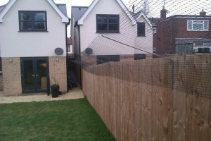 chicken-wire-cat-proof-fence